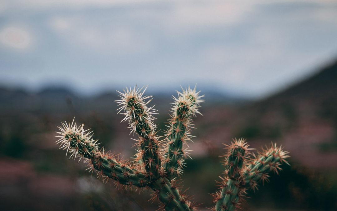A Quick NON-Attorney Guide to Arizona Divorce Laws